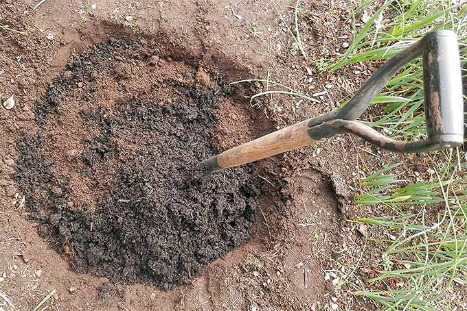 Prep the soil and amend with plenty of compost for the best veggie yields. | Gardenerspath.com