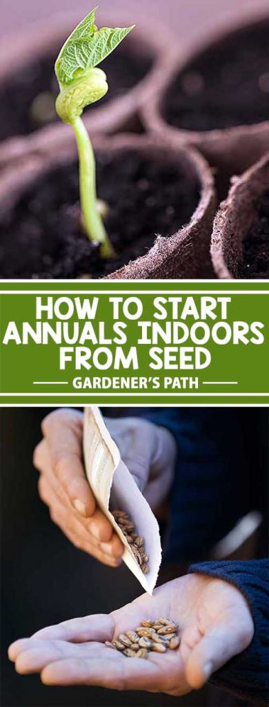 Are you itching to get into the garden, but it's still too cold outside? Satisfy your craving to play in the dirt by starting seeds indoors. With an egg carton and potting medium, you can grow flowers, herbs, and vegetables to transplant outside when the weather warms. Learn how on Gardener's Path.