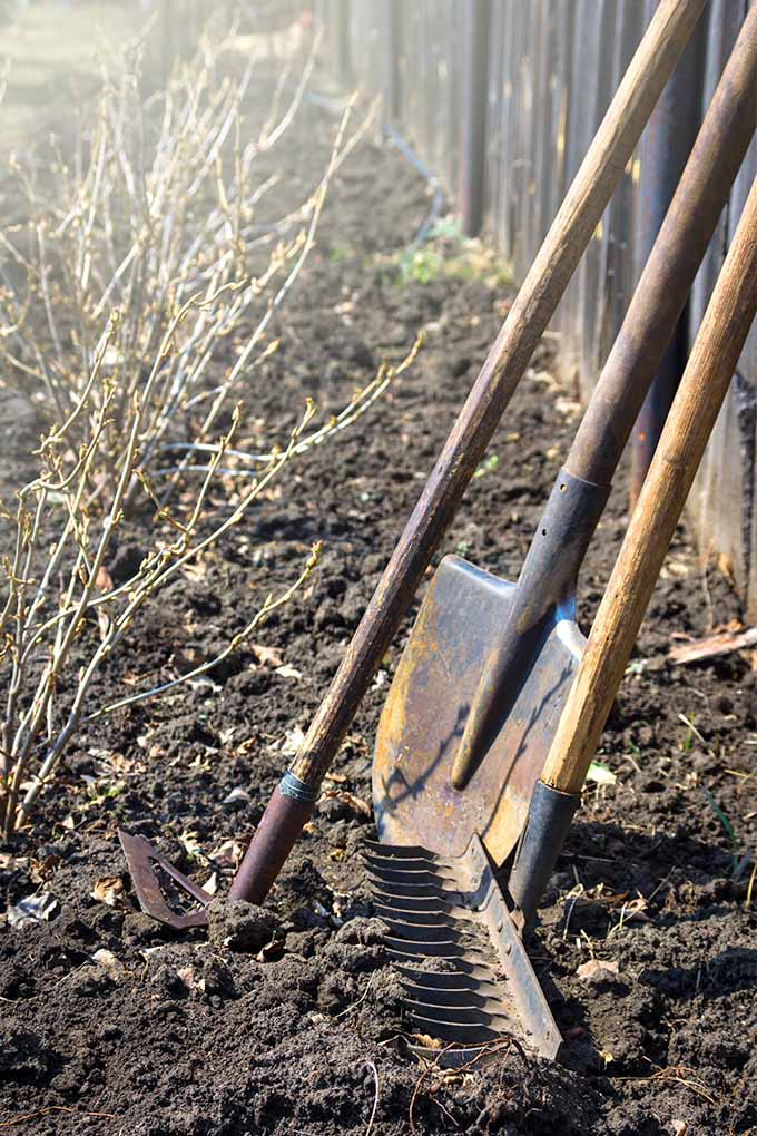 Ready To Plant Your First Vegetable Garden We Share The Best Tips And Advice