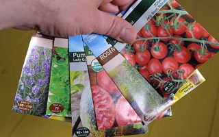 A human hand olds a cluster of seed packets of different varieties   Gardener's Path