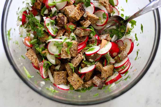 Radish Panzanella Salad | GardenersPath.com