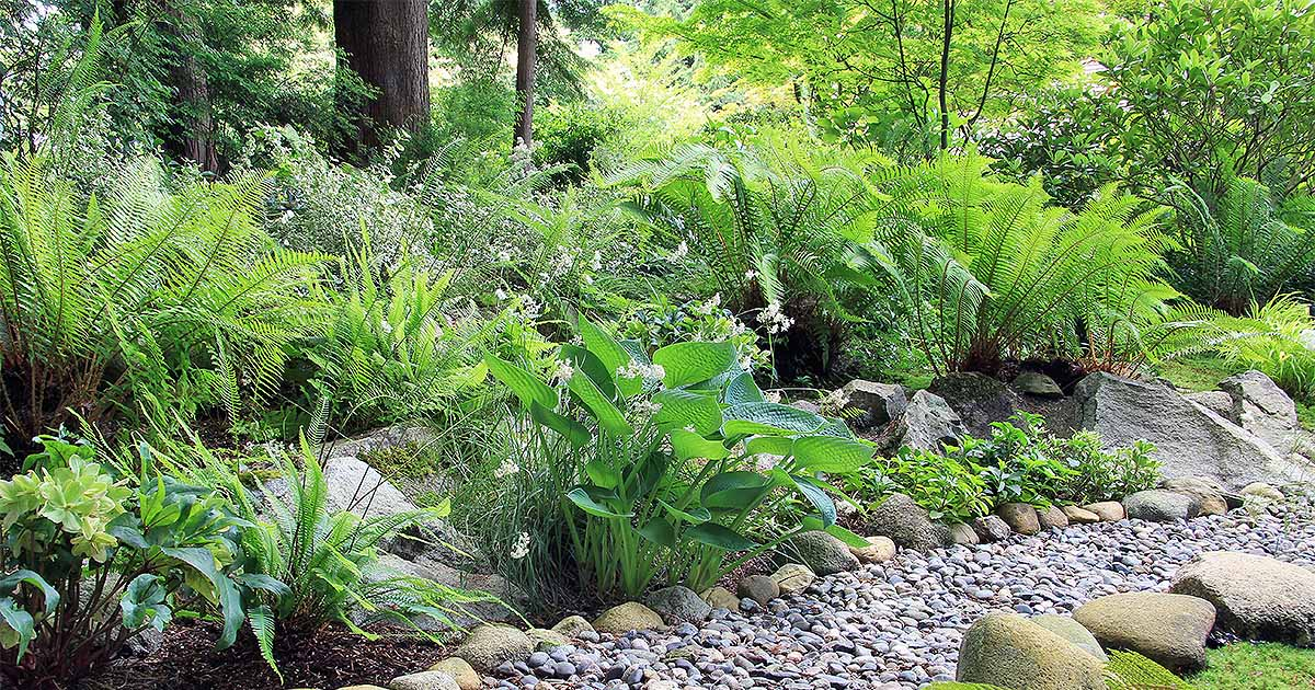Best 20 Herb Garden Design 2017: Xeriscaping Your Yard For Efficiency And Aesthetics
