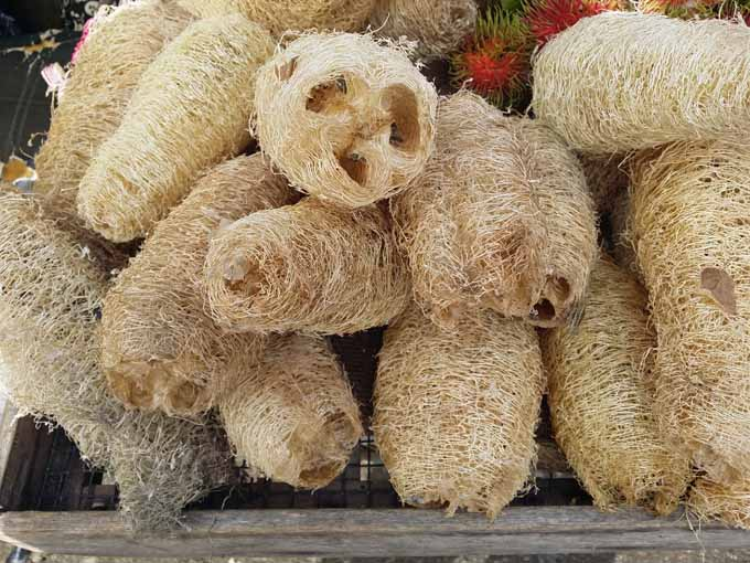 A stack of dried and prepared brown sponges made from loofa gourds.