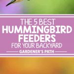 Have you ever seen hummingbirds in the wild? Tiny and fast, they're hard to spot. Wouldn't it be great to slow them down for a good look? You can, with a hummingbird feeder filled with the sweet nectar they crave. Read on to learn about 5 products that are perfect for attracting these tiny wonders to your yard.