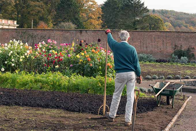 Gardening offers low-impact exercise as well as exposure to sunshine | GardenersPath.com