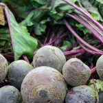 Learn which beet varieties you should grow in your garden | GardenersPath.com