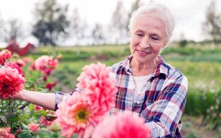 Why Seniors Should Garden (Plus 7 Tricks)