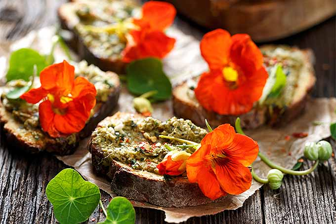 Top crostini with organic nasturtium blossoms. | GardenersPath.com