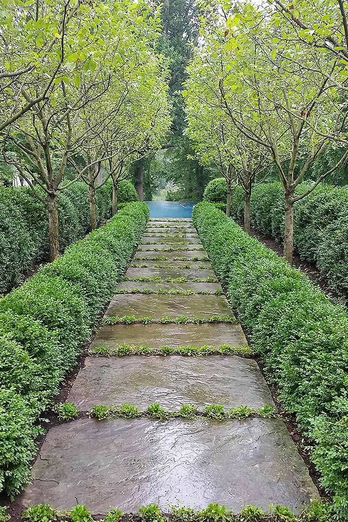 Are you a fan of formal gardens, or is something more formal more your style? https://gardenerspath.com/how-to/beginners/planting-with-purpose/
