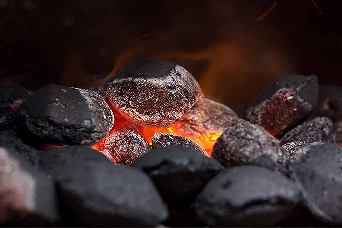 Coal fireplace fuel for outdoor entertaining. | GardenersPath.com