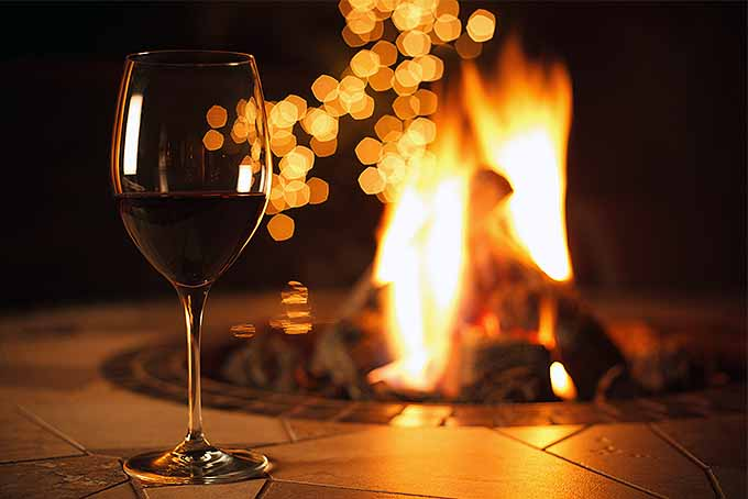 A glass of wine by the fire | GardenersPath.com