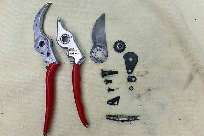 Disassembled pruners. | GardenersPath.com