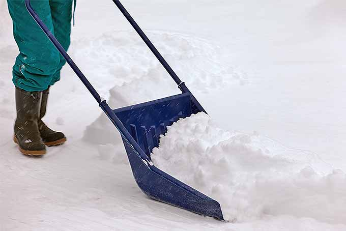 The best snow shovel options for you | GardenersPath.com