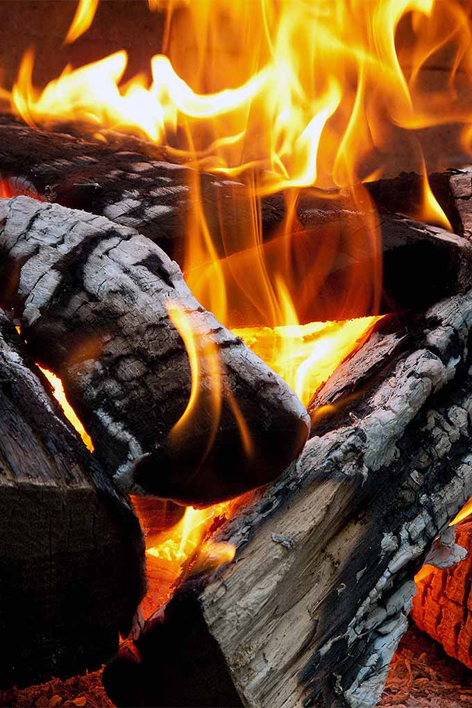 Dreaming of toasting marshmallows and warming your tootsies by the fire in your own backyard? Check out our review of the best patio heaters and fire pits: https://gardenerspath.com/gear/outdoor-furniture/best-patio-heaters-fire-pits/