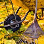 Which leaf rake is right for you? Find out with our review of the best models: https://gardenerspath.com/gear/tools-and-supplies/best-leaf-rake/
