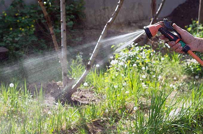 USDA Hardiness Zone Changes | GardenersPath.com