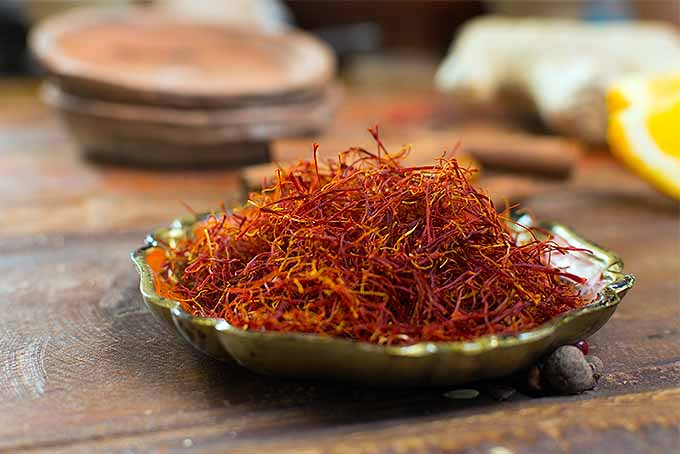 Harvest your own homegrown saffron | GardenersPath.com