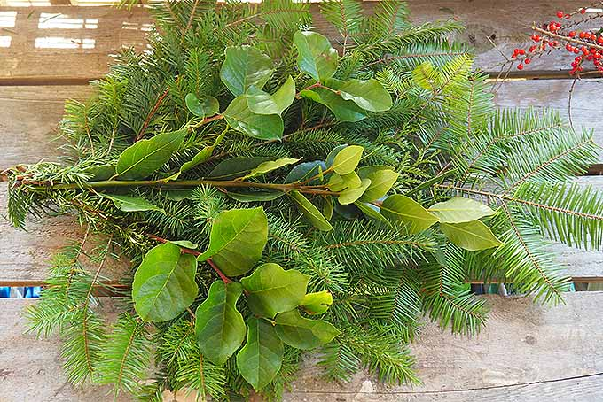 DIY Holiday Swag: Align Cut Boughs and Secure with Wire | GardenersPath.com