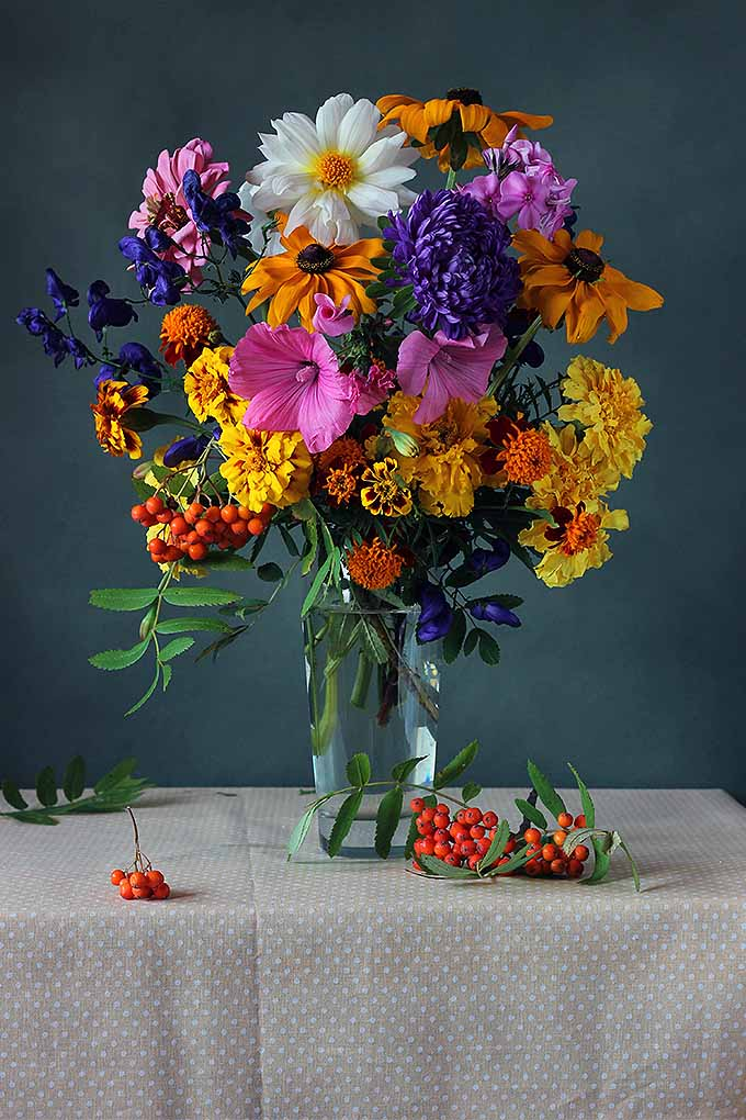 Giving a fresh-cut bouquet to a friend, or bringing flowers in from the garden? Try our tips to keep them fresh longer: https://gardenerspath.com/how-to/design/keep-cut-flowers-fresh/