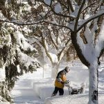 Want to be a snow clearing pro this winter? A snowplow is the answer. But which one to buy? Our buying guide can help: https://gardenerspath.com/gear/snow-blowers/buying-guide/ #snow #snowblower #buyingguide