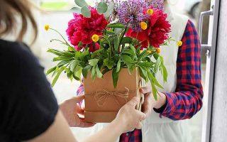 Instructions to keep floral arrangements looking fresh | GardenersPath.com