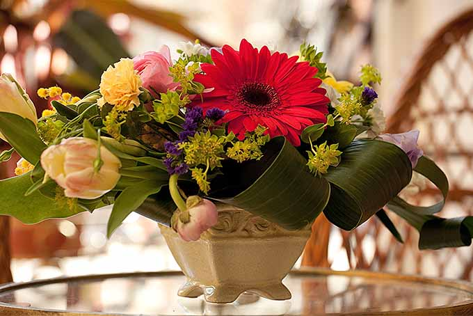 A fresh flower arrangement with gerber daisy and other flowers | GardenersPath.com