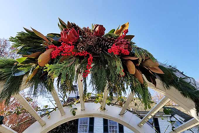 Make a Holiday Swag from Found Foliage | GardenersPath.com