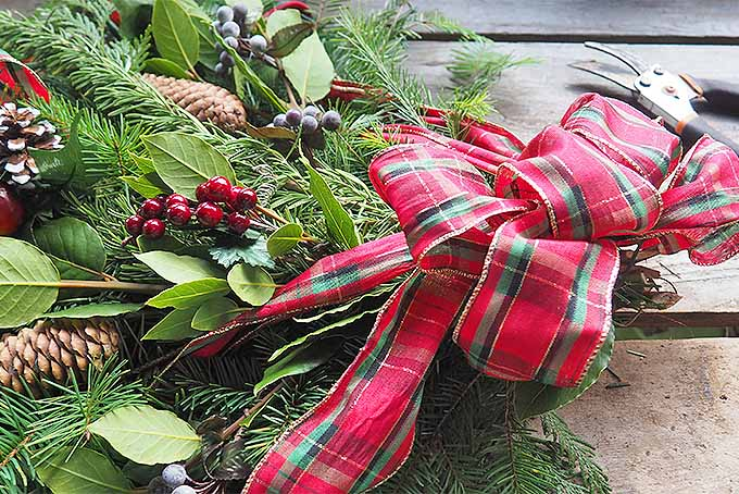Tie a Big Bow on Your Homemade Christmas Swag | GardenersPath.com