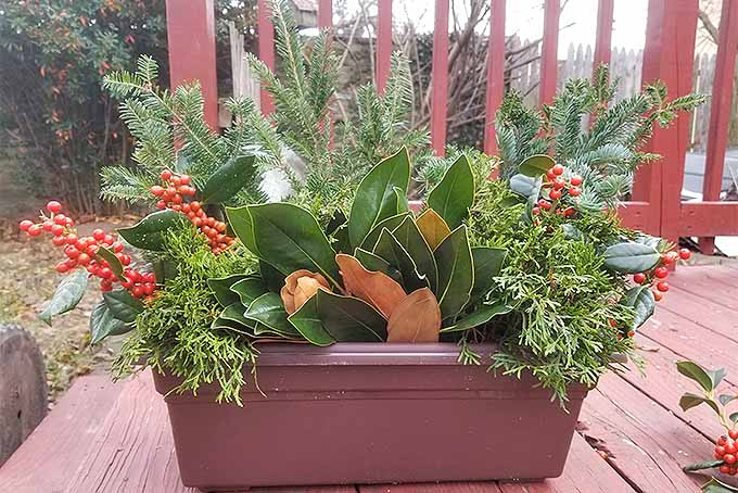 Arrange evergreen boughs, holly berries and more to create festive holiday decorations for the home. | GardenersPath.com