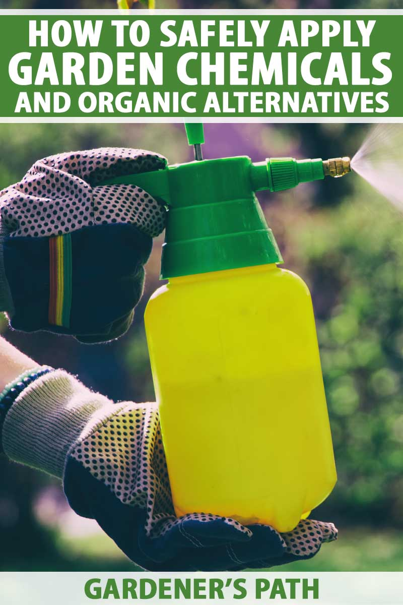 A pair of gloved human hands operates a sprayer to apply chemicals in a garden.