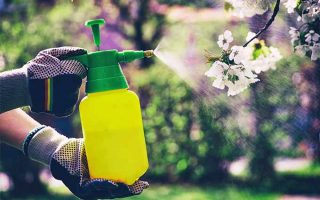 Spraying chemicals safely in the garden | GardenersPath.com
