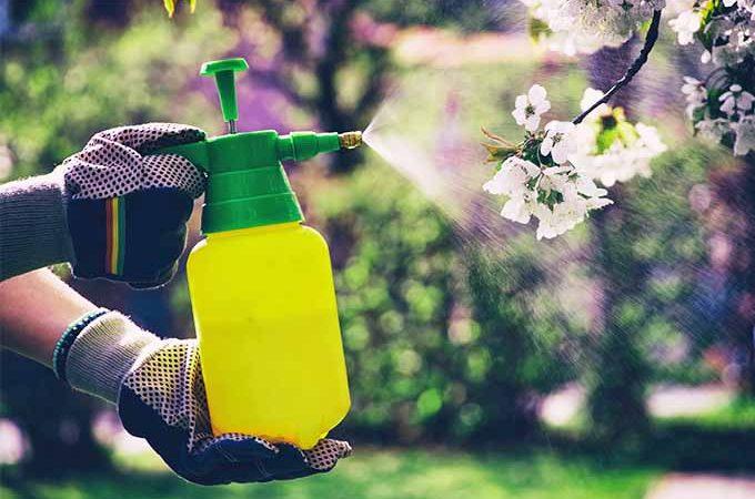 Spraying chemicals safely in the garden | GardenersPath.com