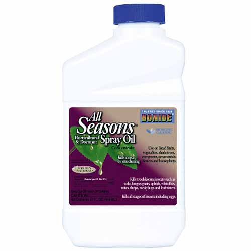 Bonide All-Seasons Spray Oil | GardenersPath.com