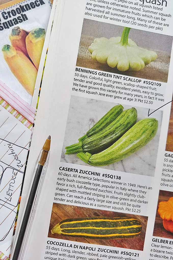 A seed catalog lays open to a page full of various zucchinis and squash varieties. In the middle of the photo is an image and description of the Caserta Zucchini. On the image of the green, tubular vegetable is a big check mark indicating that the buyer has found the right seeds. Under the catalog is a notepad and a pamphlet. The pamphlet has a picture of three yellow squashes.