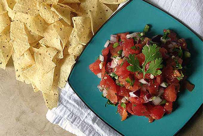 A scoop of homemade pico de gallo fills the blue, rounded square plate it is on. The pico de gallo is filled with the red of the tomatoes, the greens of the peppers and cilantro and the whites of the onions. Next to the plate is a pile of tortilla chips. Under the plate is a white napkin sitting on top of a brown table.