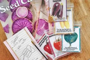 5 Tips You Need to Navigate Seed Catalogs