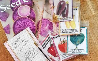 Five packets of newly purchased seeds are piled on top of The Rare Seed Catalog. The purple slices of the roots can be seen on the cover of the catalog. The seed packets each contain several small seeds, an image of the delectables it will grow, and some short quotes. The seeds are for various plants including peppers, tomatoes, eggplant and others. Next to the pile of seeds is a pen and a notepad with the names of seeds to look for in the catalog. All of this is resting on a lightly stained wooden table.