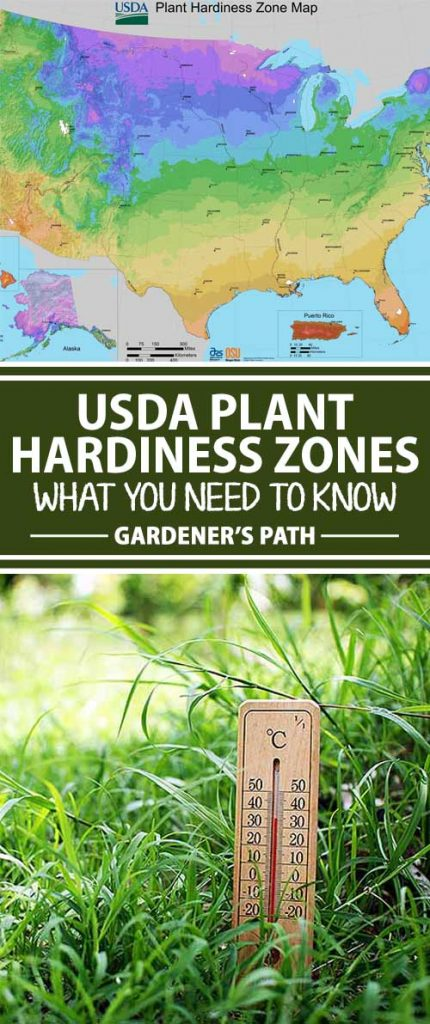 Usda Plant Hardiness Zones Have Changed What You Need To Know - Us-plant-hardiness-zone-map