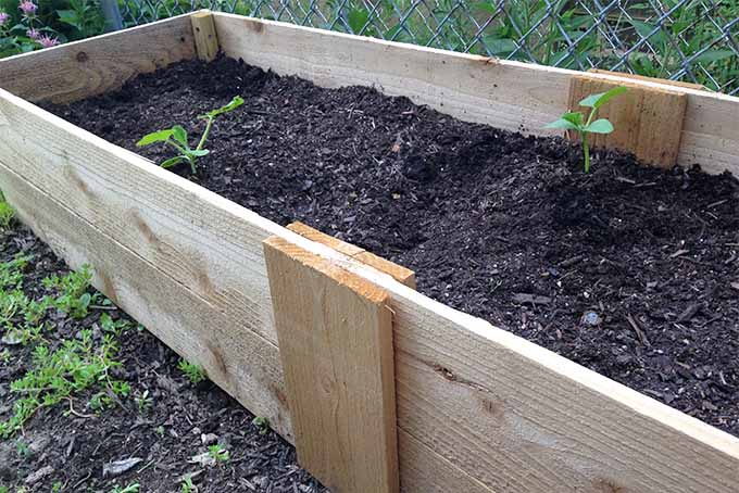 A wooden garden planter box filled with brown soil, with a few green seedlings growing in the planter.