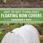 A collage of photos showing different photos of floating row covers.