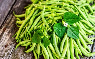 Plant Green Beans and You'll Feel like a Gardening Pro