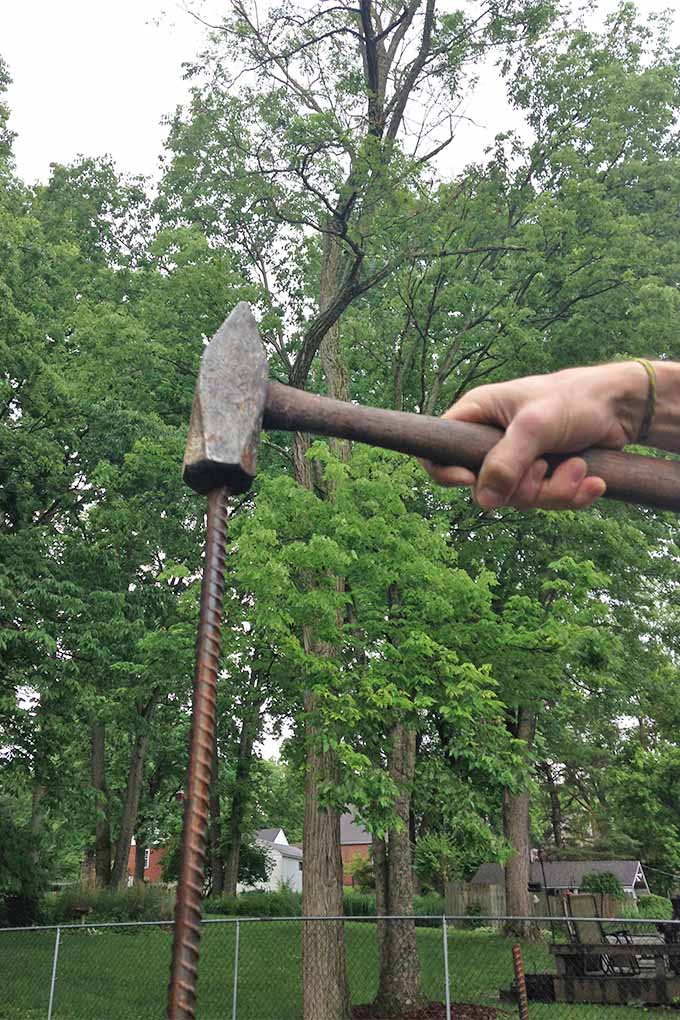 Vertical image of a hand holding a metal mallet and using it to hammer a rusty rebar stake into the ground, with tall trees with green foliage, a house, and a green fence in the background against a gray sky in the late spring.