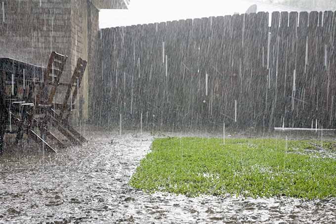 Pouring rain falls on green grass and a backyard patio with a wooden table and chairs, with a house, wooden fence, and white cloudy sky.