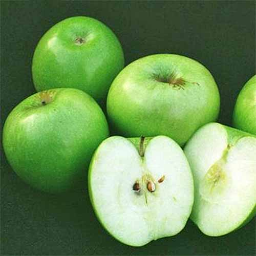 Three whole and one halved 'Granny Smith' apple, isolated on a black background.