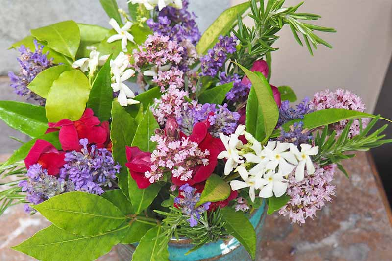 A flower arrangement with fresh bay leaves and rosemary, pink, purple, and white flowers.