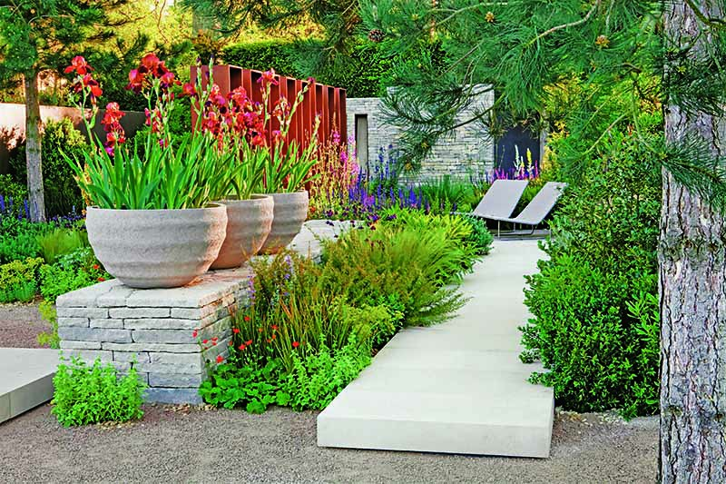 Iris 'Action Front' in containers, with a path leading to chairs, in a small outdoor space.