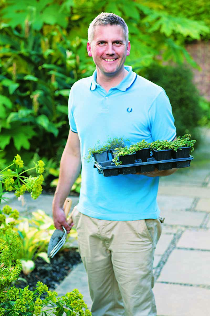 Gardener Matt James, in a blue collared shirt, holding a flat of plants, with green shrubbery in the background and a tile patio.