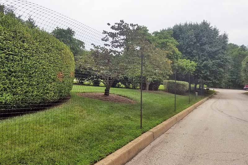 Deer fencing along a roadway with cement curb, with trees, shrubs, and a green lawn on the other side, against a white sky.