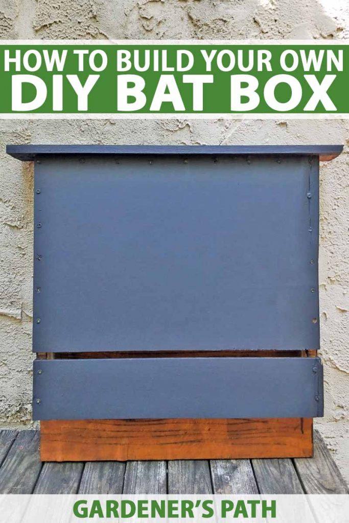 Build A Bat Box With Diy Instructions