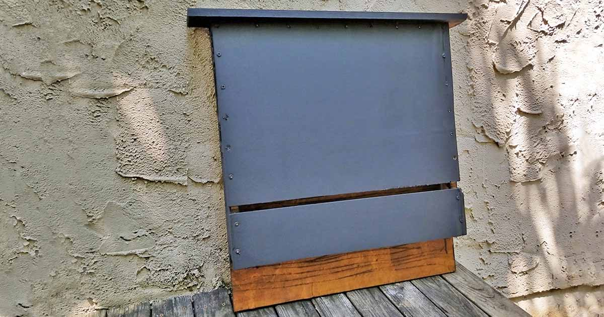 Build A Bat Box With Diy Instructions